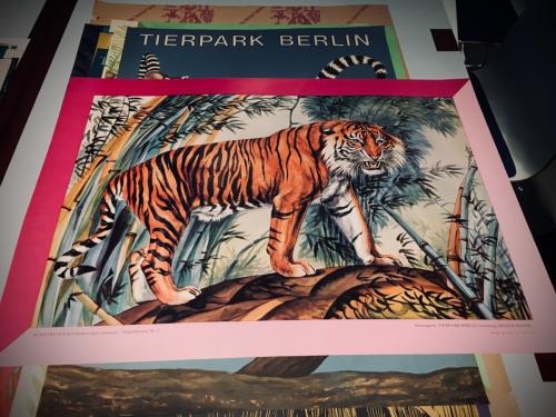 Tierparkposter von Reiner Zieger (1)