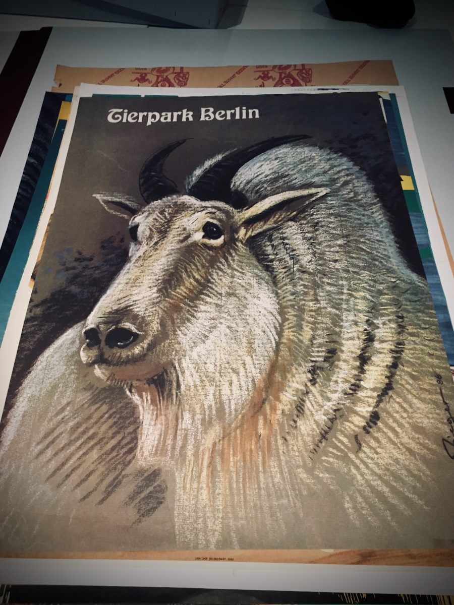 Tierparkposter von Reiner Zieger (4)