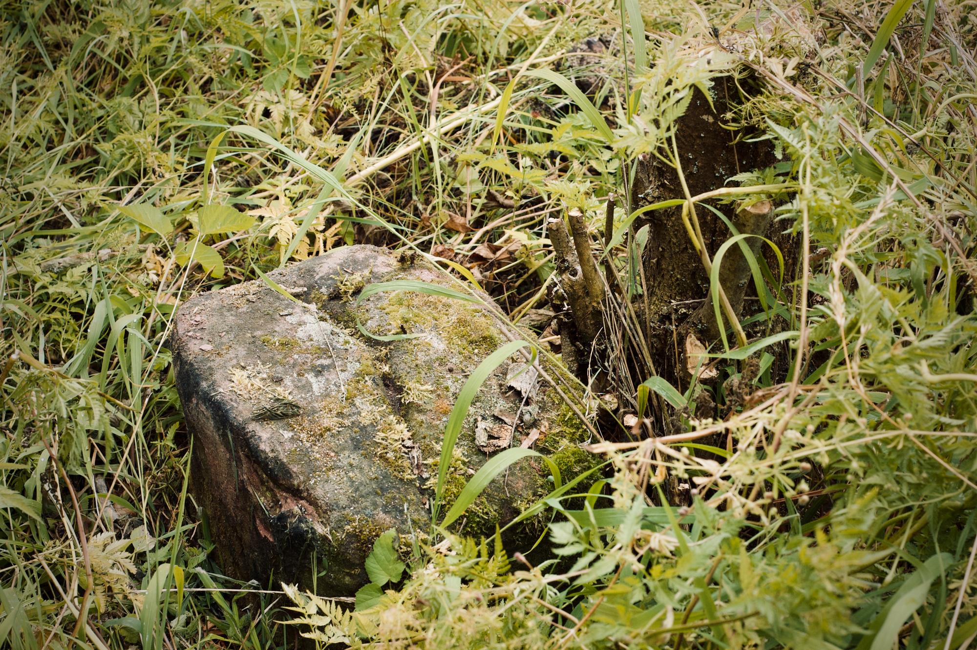 Ein alter Grenzstein