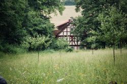 Blick auf den erhaltenen Westteil der Buchenmühle